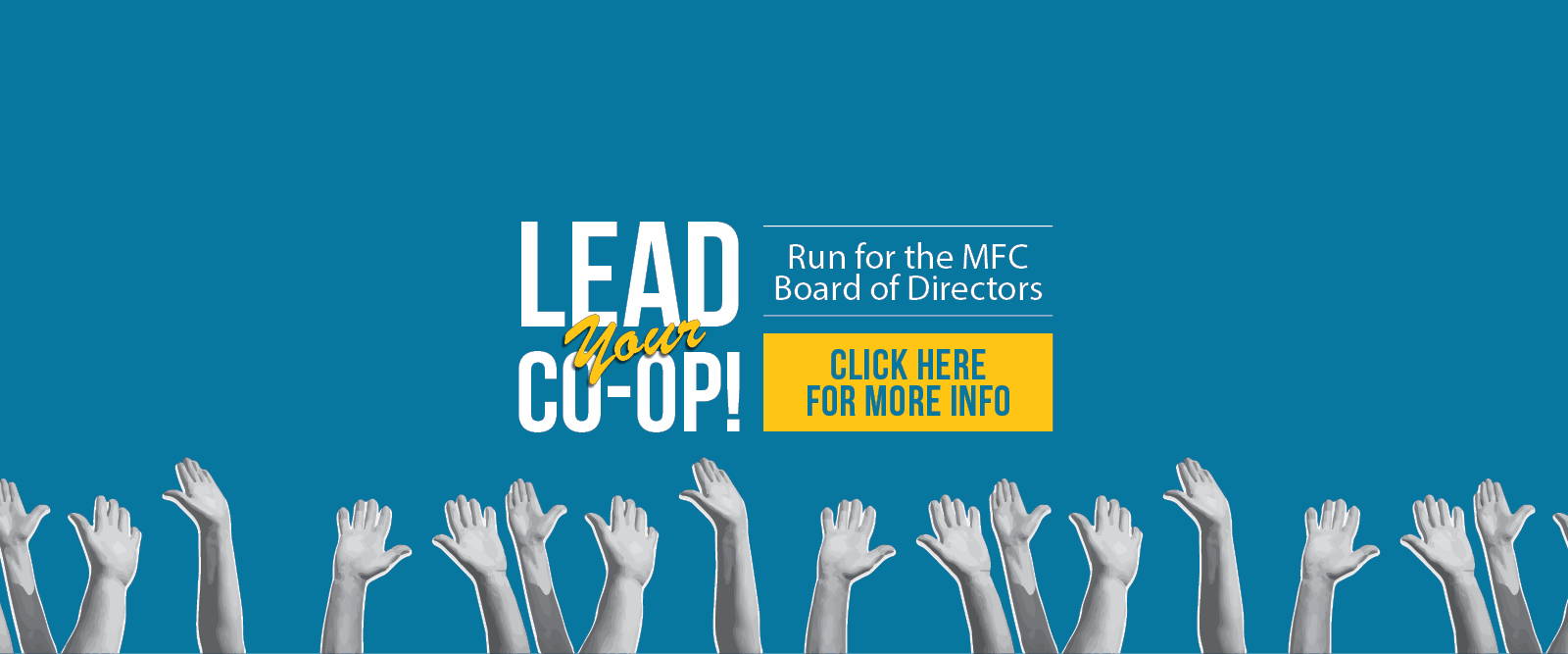 Call for Candidates 2021: Lead the Co-op